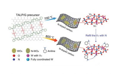 Publication in Advanced Energy Materials